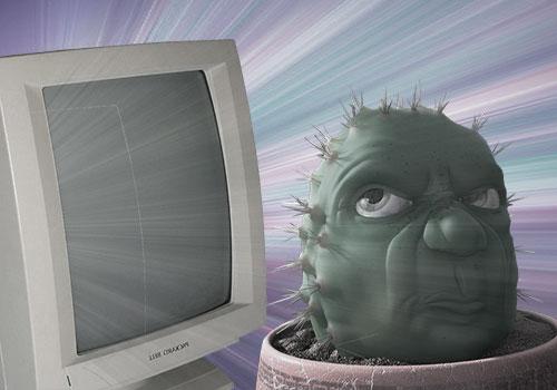 Кактус борется с излучением монитора