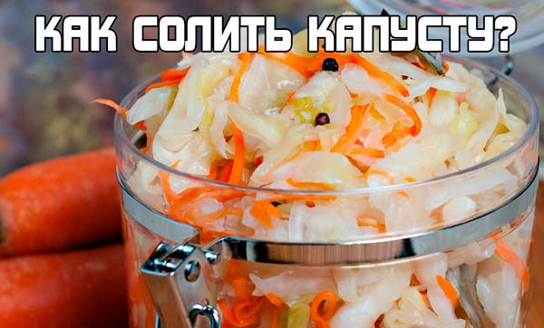 Засолка капусты - простой рецепт