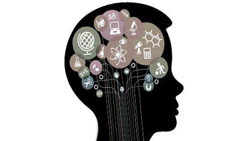 Сообразительный с развитым мозгом