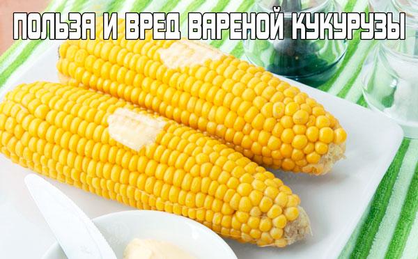 Польза и вред вареной кукурузы для людей!