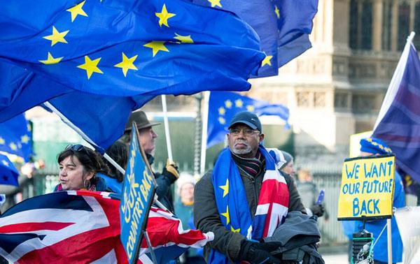 Англичане вышли на митинг за Brexit