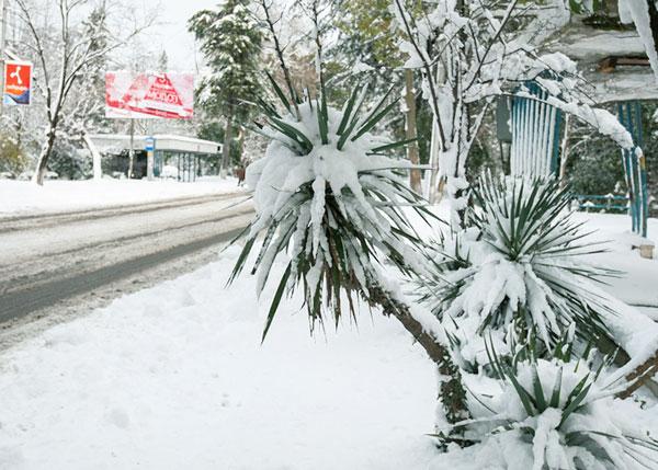 Сдвиг поясов - снег в Абхазии