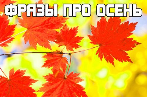 фразы про осень - сборник