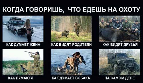 фразы про охоту - юмор