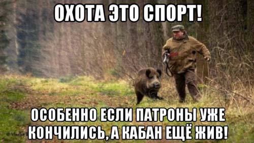 фразы про охоту и спорт