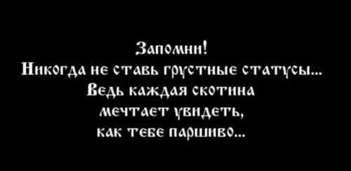О смысле грустных цитат