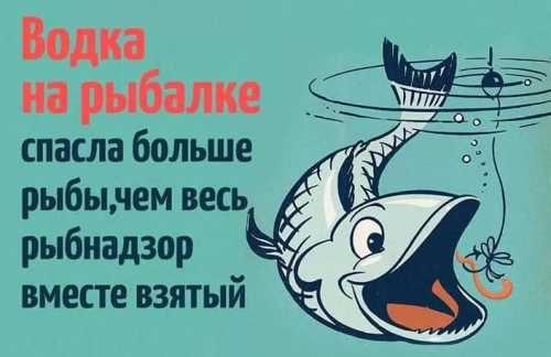 Водка на рыбалке спасает людей