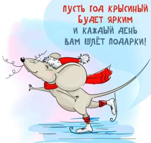 Крысиный год - открытка