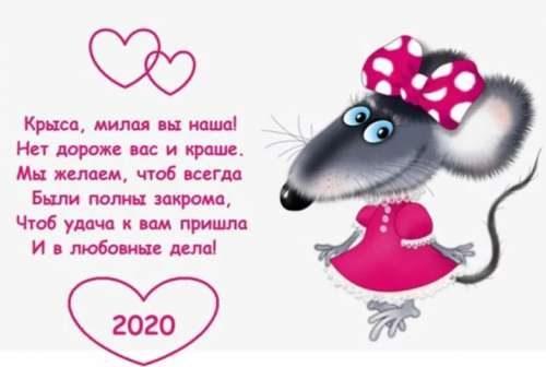 Любовные дела у Крысы