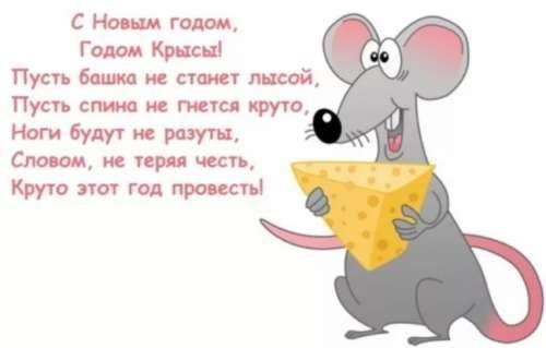 новый год крысы поздравление