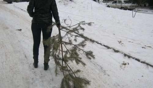 Пора убирать елку