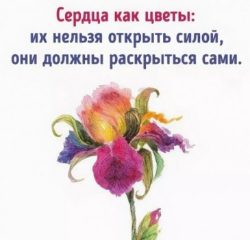Сердце как цветы