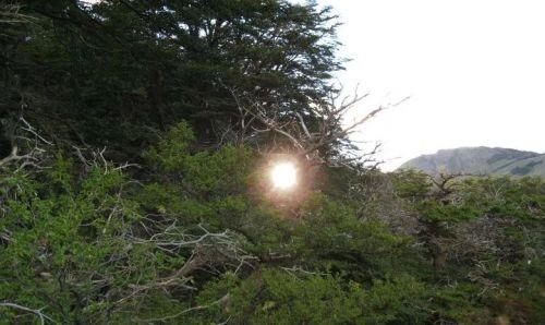феномен шаровая молния