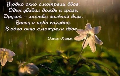 фразы про весну от Омара