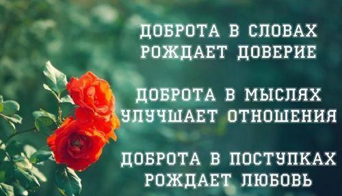цитаты добро и доброта