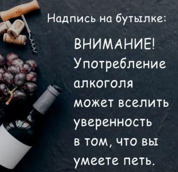 Алкоголь сделает из вас певца