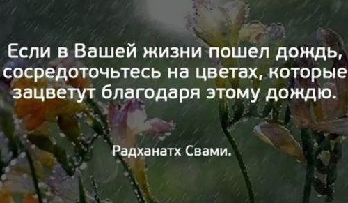 фразы про дождь (1)