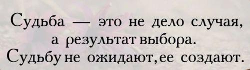 фразы про судьбу (3)