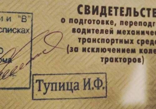 Фамилия Тупица